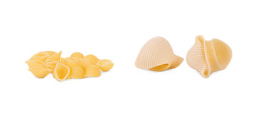 Close up of Italian pasta shells. Royalty Free Stock Photo