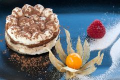 Close up of Italian Tiramisu dessert. Royalty Free Stock Photography
