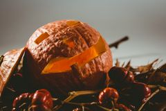 Close up of jack o lantern with small pumpkins and leaves Royalty Free Stock Photo