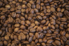 CLOSE UP OF JAMAICA BLUE MOUNTAIN COFFEE BEANS DARK BACKGROUND AND TEXTURE TOP VIEW Royalty Free Stock Images