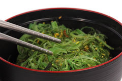 Close up Japanese seaweed in the cup Royalty Free Stock Image