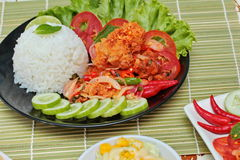 Close up Jasmine rice with spicy fried chicken salad with side dish. Selective focus Royalty Free Stock Photos