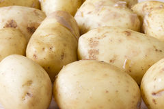 Close up Jersey Royal new potatoes Royalty Free Stock Photo