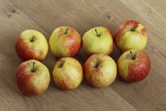 Yellow and red jonagold apples on wooden background. Close up of jonagold apples on kitchen wooden table Stock Photography