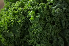Close-up of kale. Close-up of fresh kale Stock Image
