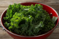 Close-up of kale in colander. Close-up of kale in red colander on table Royalty Free Stock Photos