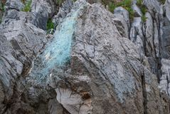 Close-up of Karstic rocks with remains of a fishing net. In Berellin, Prellezo, Cantabria, Spain royalty free stock images