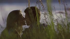 Close-up of kissing couple sitting in tall grass stock video