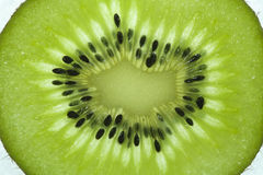 Close up of a kiwi Royalty Free Stock Images