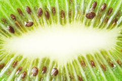 Close up of a kiwi fruit Stock Photography