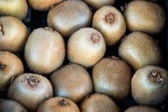 Close up of kiwi fruit . Stock Image