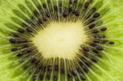 Close up kiwi slices background Royalty Free Stock Image