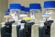 Close-up of laboratory pipettes royalty free stock photo