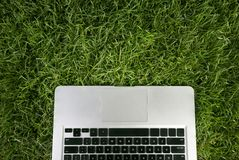 Using laptop on the park Stock Photography