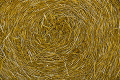 Close-up of a large bail of hay Royalty Free Stock Photography