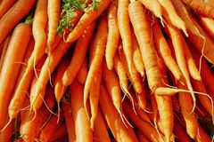 Bunch of Bright Orange Carrots stock images