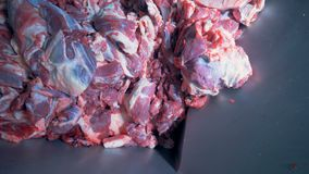 Close up of large slabs of meat getting sucked into a mincing machine stock footage
