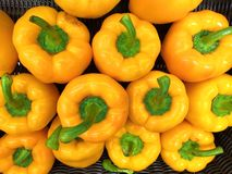 4 large yellow peppers with green pods royalty free stock photography