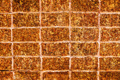 Close up Laterite stone brick wall Stock Image