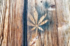 Close-up of leaf printed on wooden wall royalty free stock photos