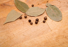Close up leafs of laurel and peppercorns Royalty Free Stock Photo
