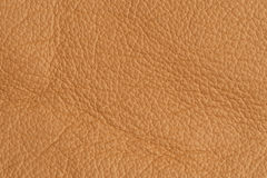 Close up leather beige background Royalty Free Stock Image