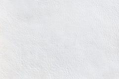 Close up leather texture Stock Photos