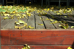 Close up on the Leaves and the Deck. Close Up - Leaves on the Deck Royalty Free Stock Photo