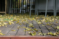 Close up on the Leaves Falling. Close Up - Leaves on the Deck Royalty Free Stock Photography