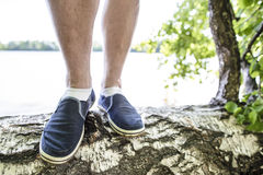 Close-up of legs of a man who stands on the birch Stock Photography