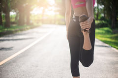 Close up of legs and torso of women. Young woman doing warming up before the morning run Royalty Free Stock Image