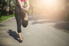 Close up of legs and torso of women. Young woman doing warming u. P before the morning run Stock Photos