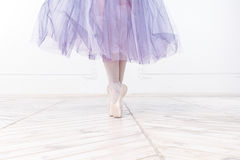 Close-up Legs Of Young Ballerina Stock Image