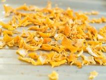Close up Lemon peel preparing foor cooking. Depth of field Close up Lemon peel preparing for cooking royalty free stock photography