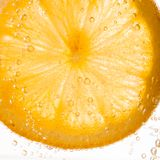 Close-up of lemon slice Stock Photography