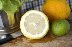 Close up lemon texture Royalty Free Stock Photo