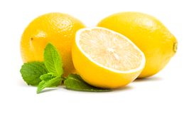 Close up of lemons with melissa. Isolated on white. Concept of healthy eating and dieting lifestyle royalty free stock photography