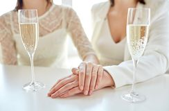 Close up of lesbian couple with champagne glasses Royalty Free Stock Image