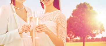 Close up of lesbian couple with champagne glasses Royalty Free Stock Photos