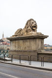 Close up lion statue at  the Chain bridge, Budapest, Hungary Royalty Free Stock Photos