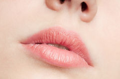 Close-up lips of beauty young woman Stock Photography