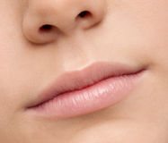 Close up lips makeup zone. Macro. Close up shoot of young beautiful girl with perfect skin: makeup mouth zone. Lips Stock Images