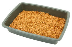 Close Up Of Litter Box Royalty Free Stock Image