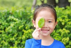Close up little Asian child girl holding a green leaf closing right eye in green garden background.  stock image