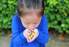 Close-up little Asian child girl holding some colored coated chocolate candy in her hands.  royalty free stock image