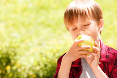 Close up of little boy biting off apple Royalty Free Stock Photo