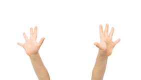 Close up of little child hands raised upwards. People, childhood, gesture and body parts concept - close up of little child hands raised up Royalty Free Stock Photo