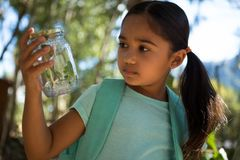 Little girl with backpack looking at jar with plant on a sunny day in the forest. Close-up of little girl with backpack looking into jar with plant on a sunny Royalty Free Stock Photos