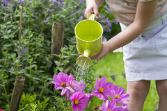 Close-up of little girl watering flowers in garden Stock Photo