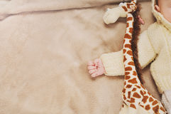 Close up little hand of sleeping cute newborn baby and his toy Stock Images